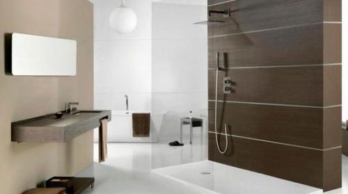 Ванна для душевой. Душ в ванной без душевой кабины: тонкости оформления