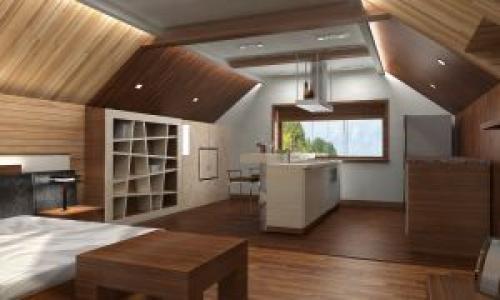 Кухня гостиная спальня в одной комнате. Отрицательные моменты