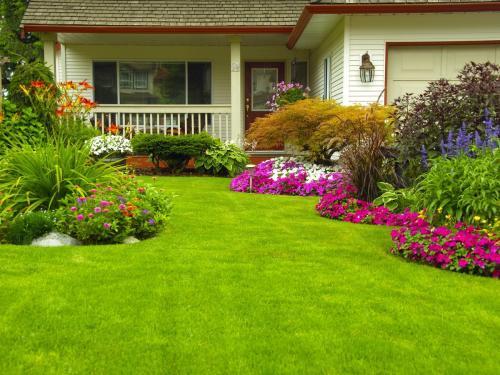 Малоуходный сад основные правила. 7 секретов сада, за которым легко ухаживать
