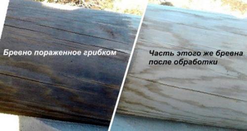 Деревянный дом обработка антисептиком. Защита антисептиками